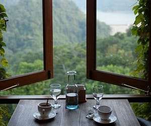 nature, window, and coffee image