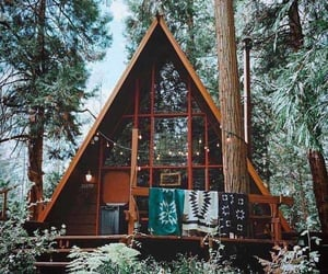 cabin, forest, and house image
