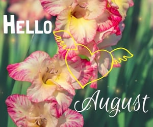 August, green, and sweet image