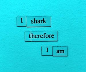 blue, shark, and turquoise image