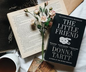 book, literature, and vintage image