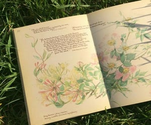 book, aesthetic, and floral image