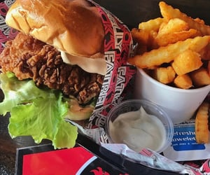 Chicken, food, and fries image