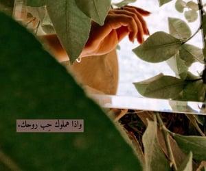 شعر شعبي and ستوريات image