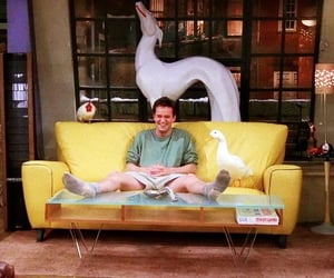 chandler, chandler bing, and duck image
