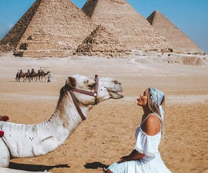 camel, egypt, and egyptian architecture image