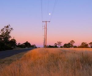 beautiful, moon, and nature image