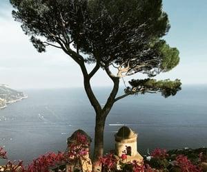 Amalfi, boat, and flowers image