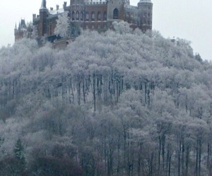 castle, forest, and winter image