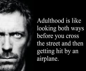 adulthood, house, and what just happened image