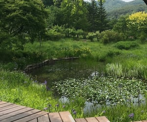 green, nature, and cottagecore image