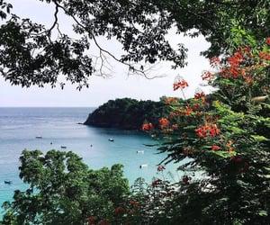 summer, travel, and wanderlust image