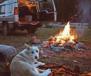 adventure, aesthetic, and fire image
