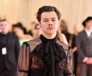 Harry Styles, met gala, and harry image