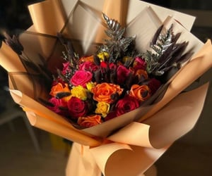 colorful, roses, and beautiful image