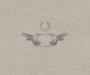 diseno, bird, and colibri image