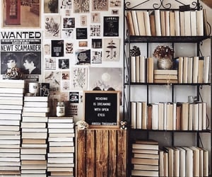 aesthetic, libros, and lion image