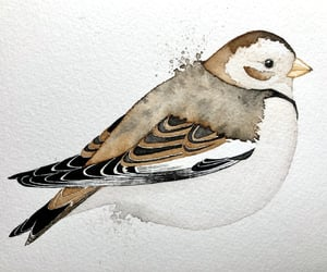 art, watercolor, and watercolour image