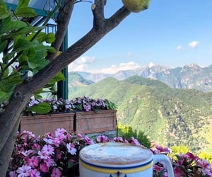 coffee, flowers, and mountains image