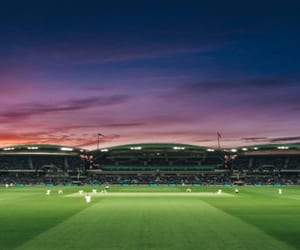 cricket, sports, and tips image