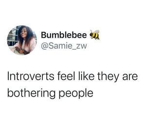 introvert, psychology, and shy image
