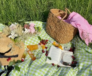 aesthetic, picnic, and cottagecore image