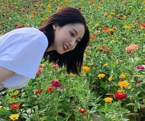 flowers, kpop, and nature image