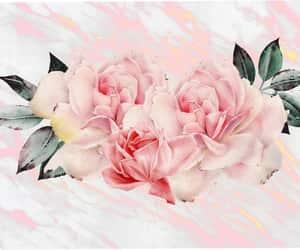 peony wedding, nursery pink girl, and blush wallpaper etsy image