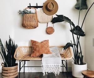 plants, decor, and design image