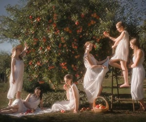 apple, ethereal, and orchard image