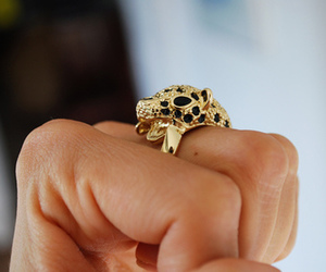 fashion, panther, and rings image