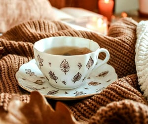 tea, cozy, and autumn image