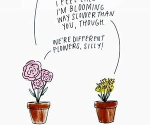 bloom, compare, and compliment image