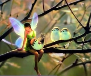 fairy and birds image