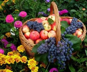 цветы, корзина, and яблоки image