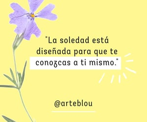 books, edit, and frases image