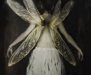 fairy, grunge, and aesthetic image