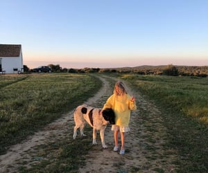 baby, dog, and summer image