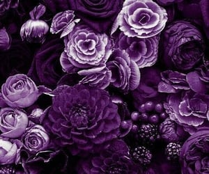 wallpaper, flowers, and purple image