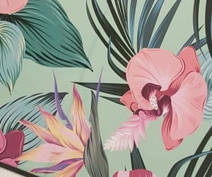 background, floral background, and floral wallpaper image