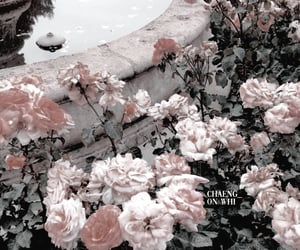 psd and flower theme image