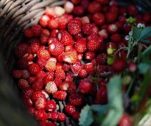 красный, еда, and ягоды image