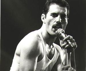 Freddie Mercury, Queen, and black and white image