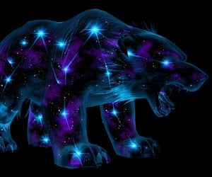 bear, celestial, and constellation image