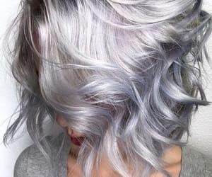bob, curly, and grey image