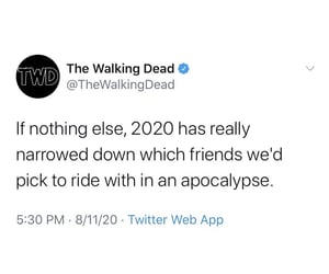 2020, tv show, and twd image