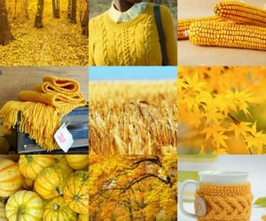 autumn, cosy, and fashion image