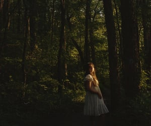aesthetic, forest, and dress image