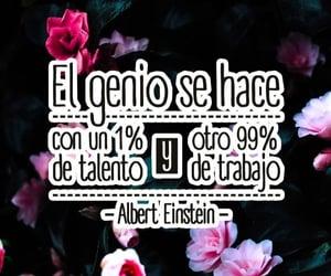 Albert Einstein, roses, and black image