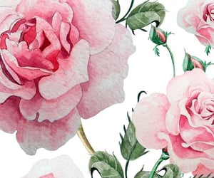 background, floral wallpaper, and pink roses image